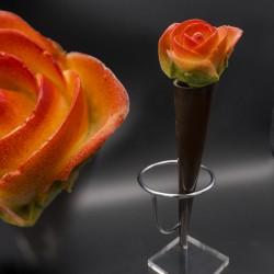 Rose choc dans son fourreau de chocolat